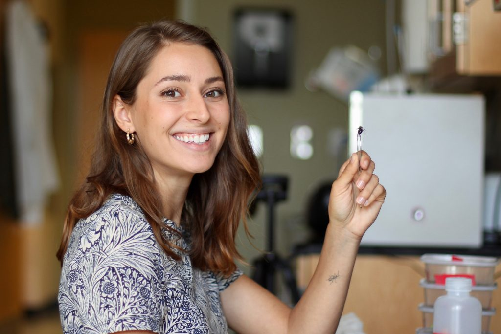 Victoria Amaral bee technician for Irwin lab.