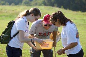 Collecting insects from grasses at NC Art Museum.